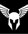 Black and white logo of Viking helmet with wings