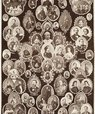 An overview of the European Reigning Sovereigns and Principal Royals in 1860.